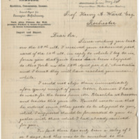 Möller, Otto W. Letter to Ward, Henry A. (1883-05-07)