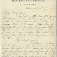 Lucas, Frederic A. Letter to Ward, Henry A. (1879-11-01)
