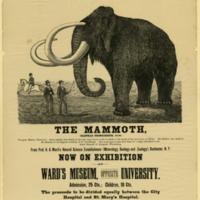 mammoth-poster.jpg