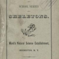 Ward-School-Series-Skeletons-1.jpg