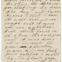 Hannah, W. C. Letter to Ward, Henry Augustus. (1873-12-08)