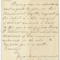 Clark, Edith E. Letter to Ward, Henry Augustus (1873-08-20)