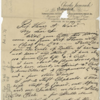 Jamrach, Charles. Letter to Ward, Henry A. (1875-12-09)